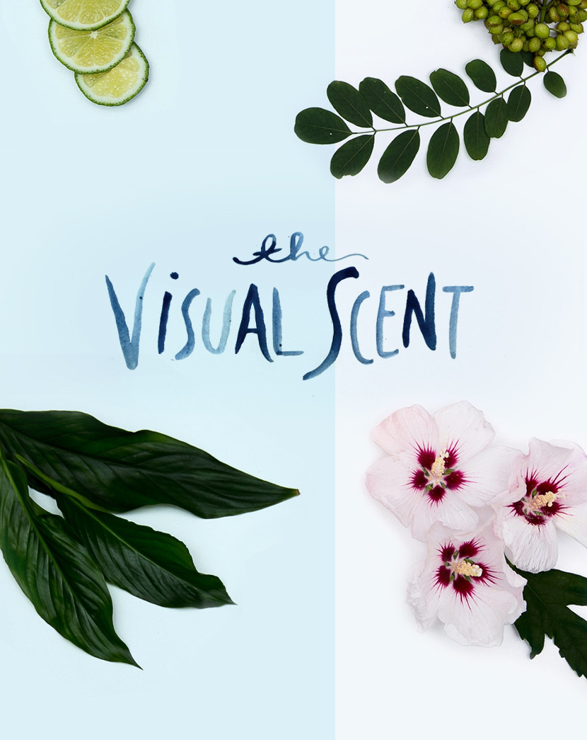 The Visual Scent in Collaboration with Method | The Fresh Exchange