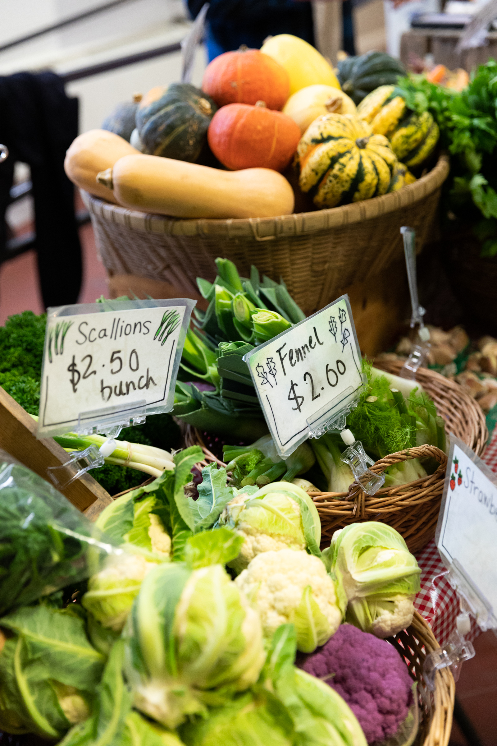 Holiday Farm Market Trip - How to make the most out of your time there.