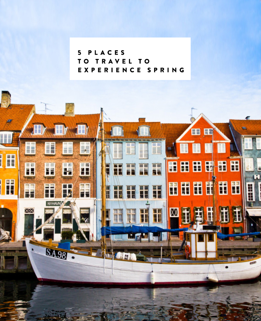 The 5 best places in the world to experience the best spring of your life. Why Paris, Copenhagen, Japan, The Netherlands, and Savannah, Georgia need to be on your travel list to see in the spring. Find out more on The Fresh Exchange
