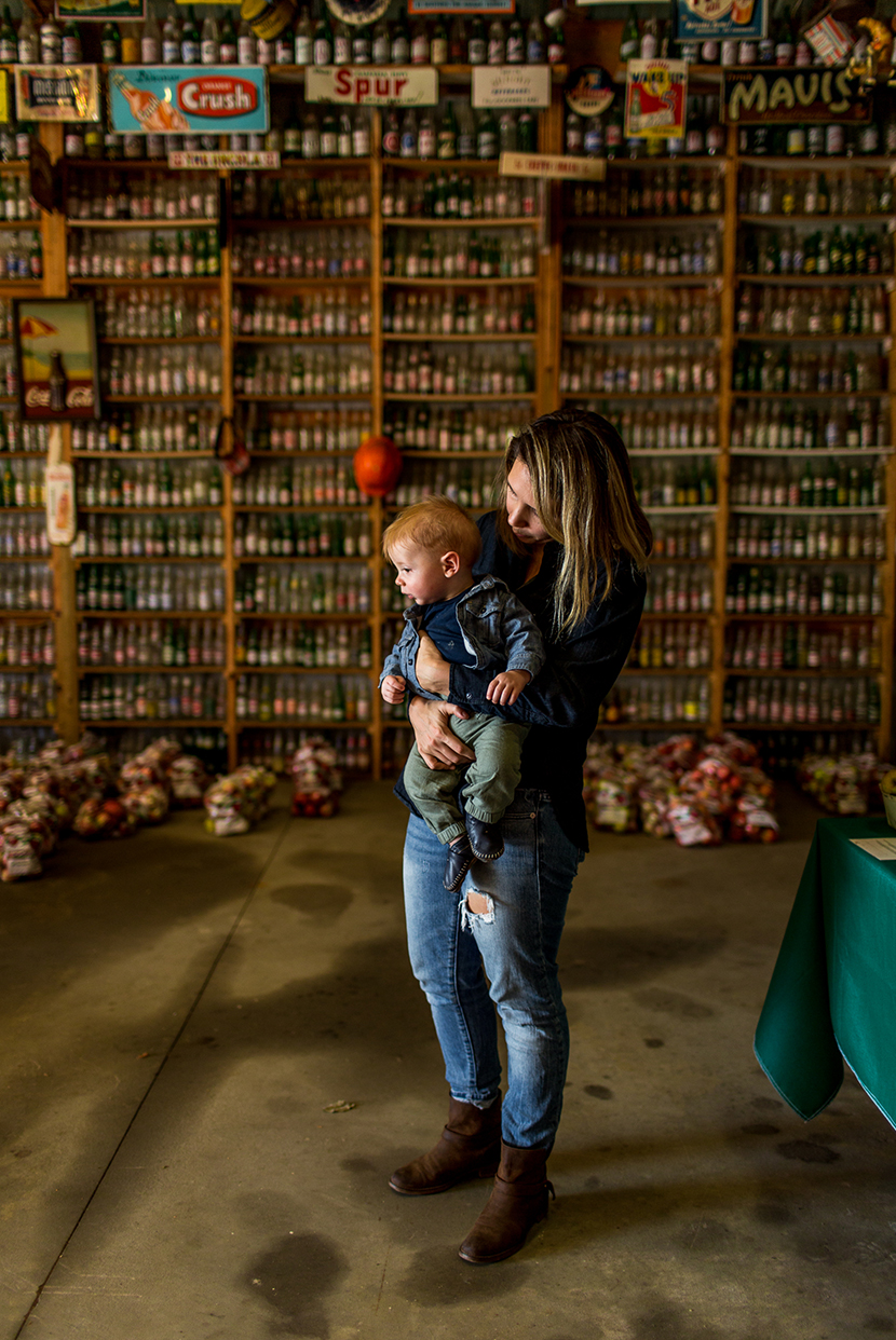 A Trip to Christmas Cove in Northport, Michigan for Heirloom Apples | The Fresh Exchange