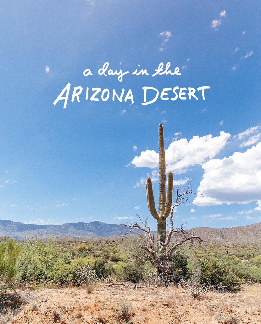 A Day in the Arizona Desert | The Fresh Exchange