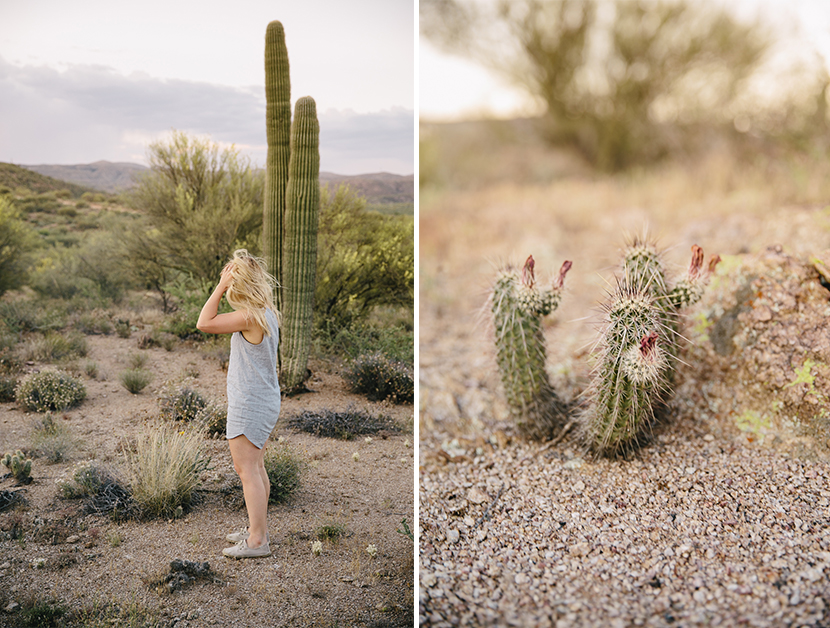 A Day in the Arizona Desert  |  The Fresh Exchange