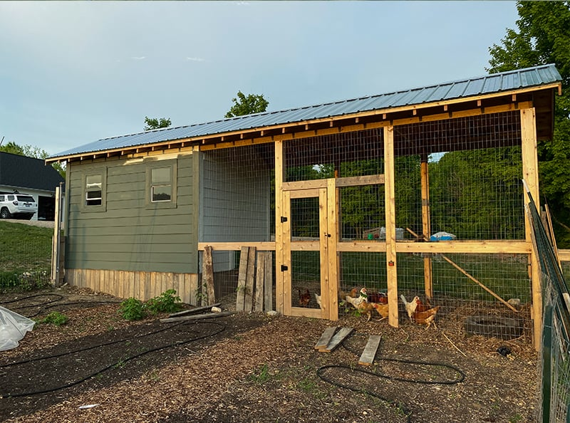 Chicken run with door and metal roof for predator protection