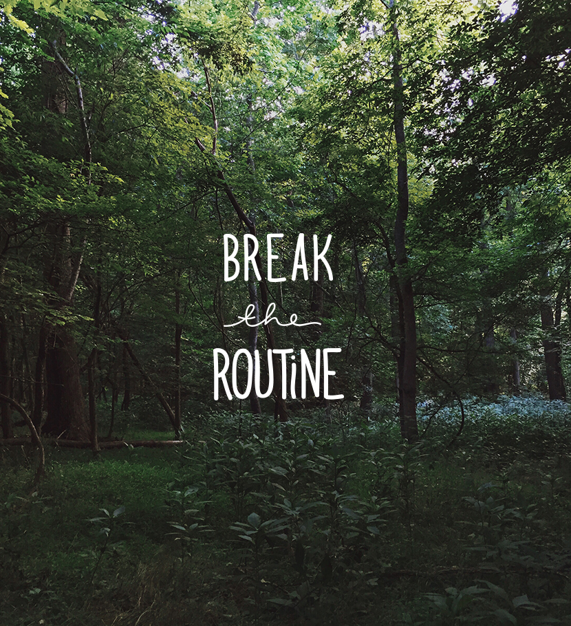 Weekend Thoughts: Break the Routine  |  The Fresh Exchange