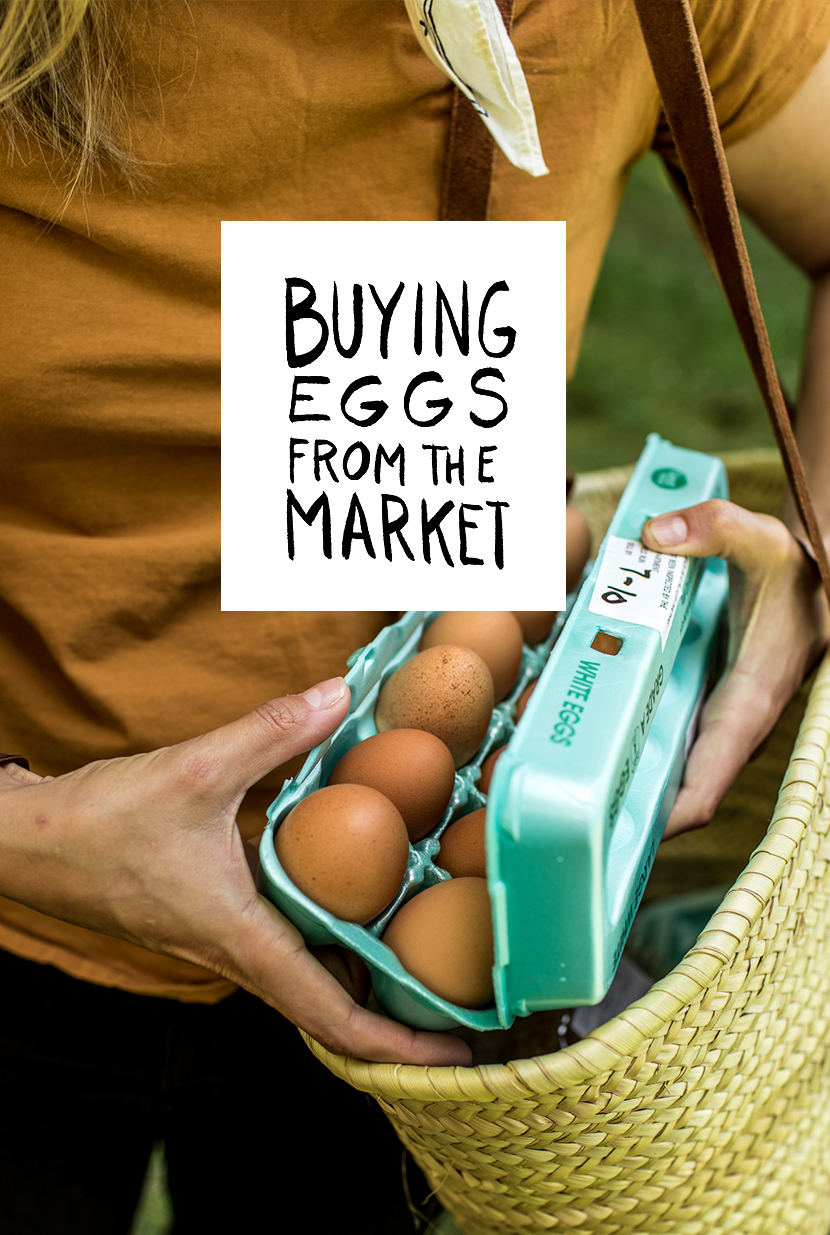 Tips for Buying Eggs at the Farmer's Market from The Fresh Exchange.
