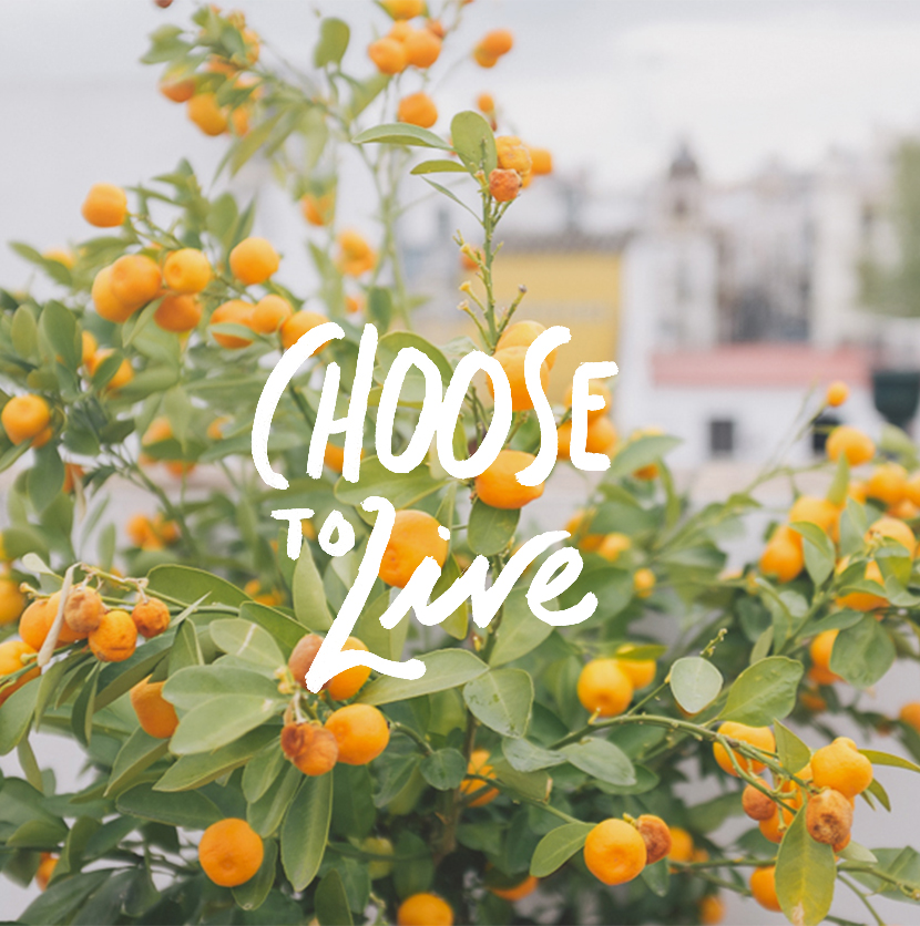 Monday Words: Choose to Live | The Fresh Exchange
