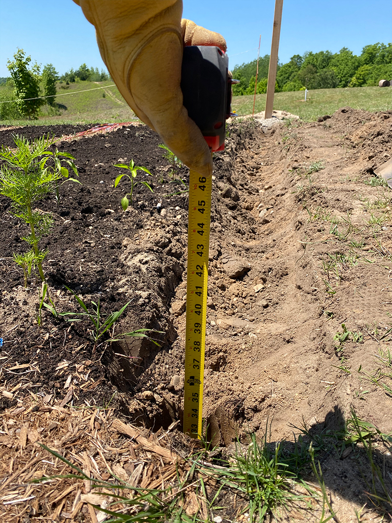 How to Build a DIY Garden Fence affordably that will keep deer out of your garden.