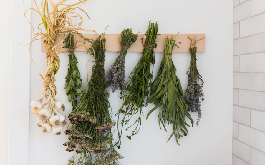 How to Dry and Save Herbs from Your Garden