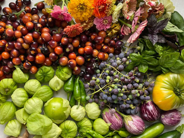 Eat Local: 5 Simple and Affordable Ways - Fresh Exchange
