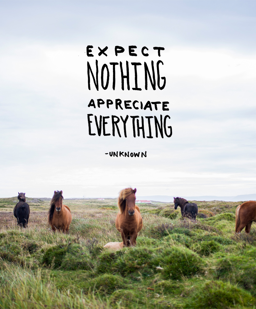 Expect Nothing. Appreciate Everything. | The Fresh Exchange