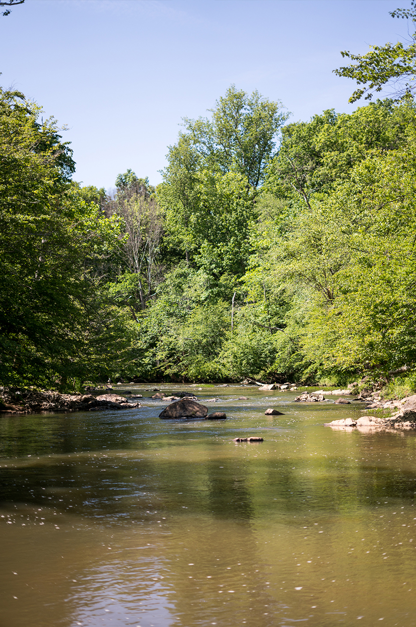 Family Hiking at the Eno River, North Carolina with L.L. Bean | The Fresh Exchange