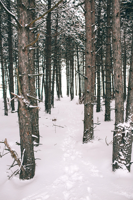 Northern Michigan Winter Hike  |  The Fresh Exchange