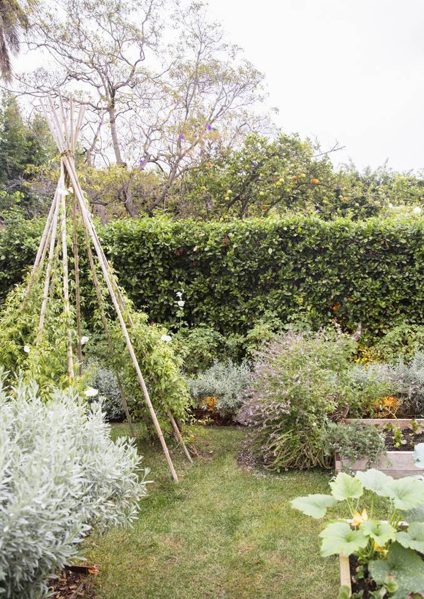 Dreamy Garden Inspiration for your summer garden. Get all the inspiration on the fresh exchange for your garden.