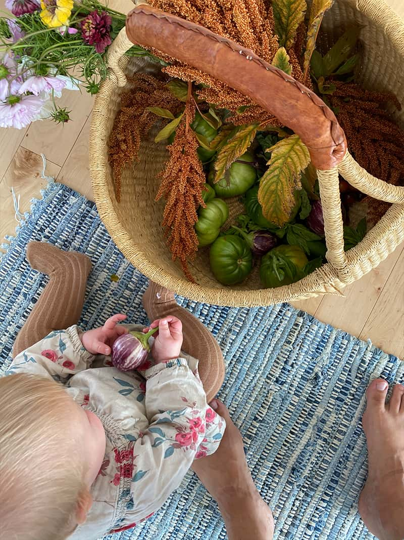 Why And How to Grow A Garden with your Kids This Summer.