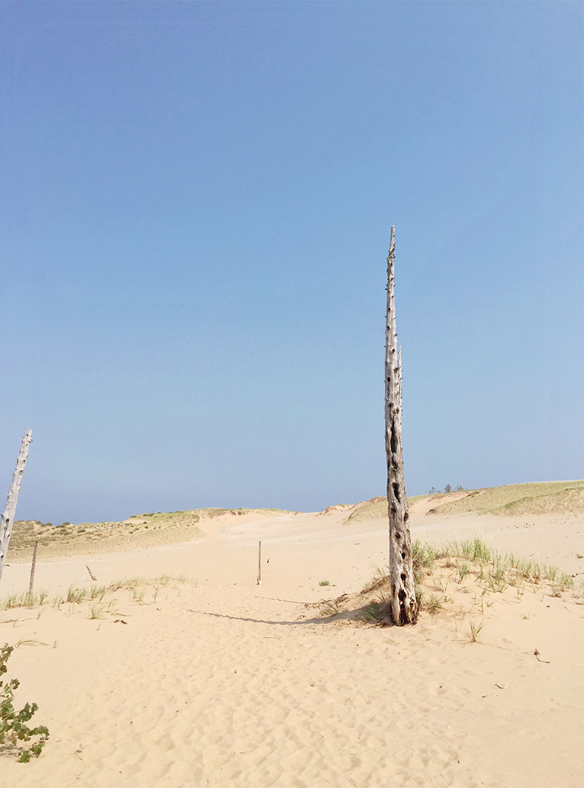 Glen Haven Dune Hike, Leelanau Peninsula, Michigan | The Fresh Exchange