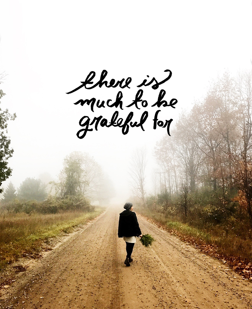 Gratitude Breeds Gratitude | The Fresh Exchange