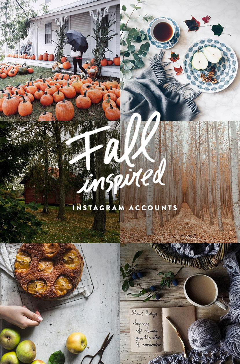 Fall Inspired Instagram Accounts for you |  The Fresh Exchange
