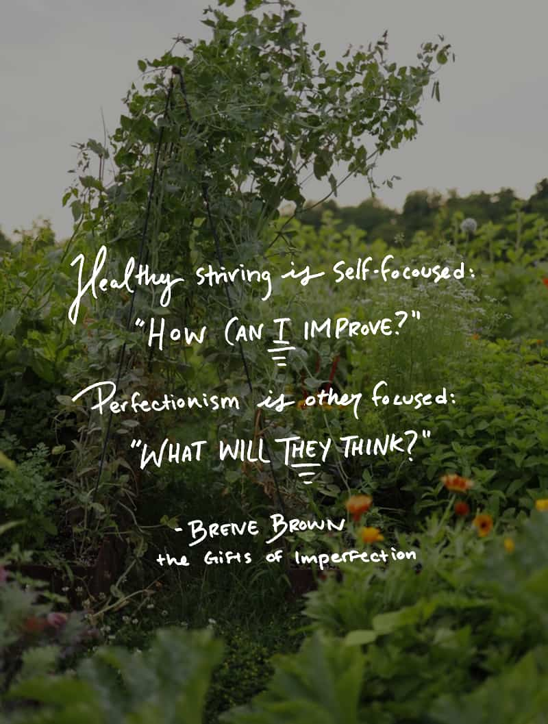 Brene Brown - Gifts of Imperfection Quote