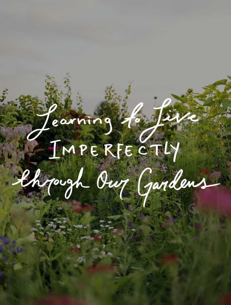 Learning to Live Imperfectly through our garden