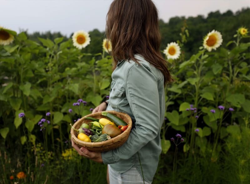 Woman in garden in the summer with sunflowers