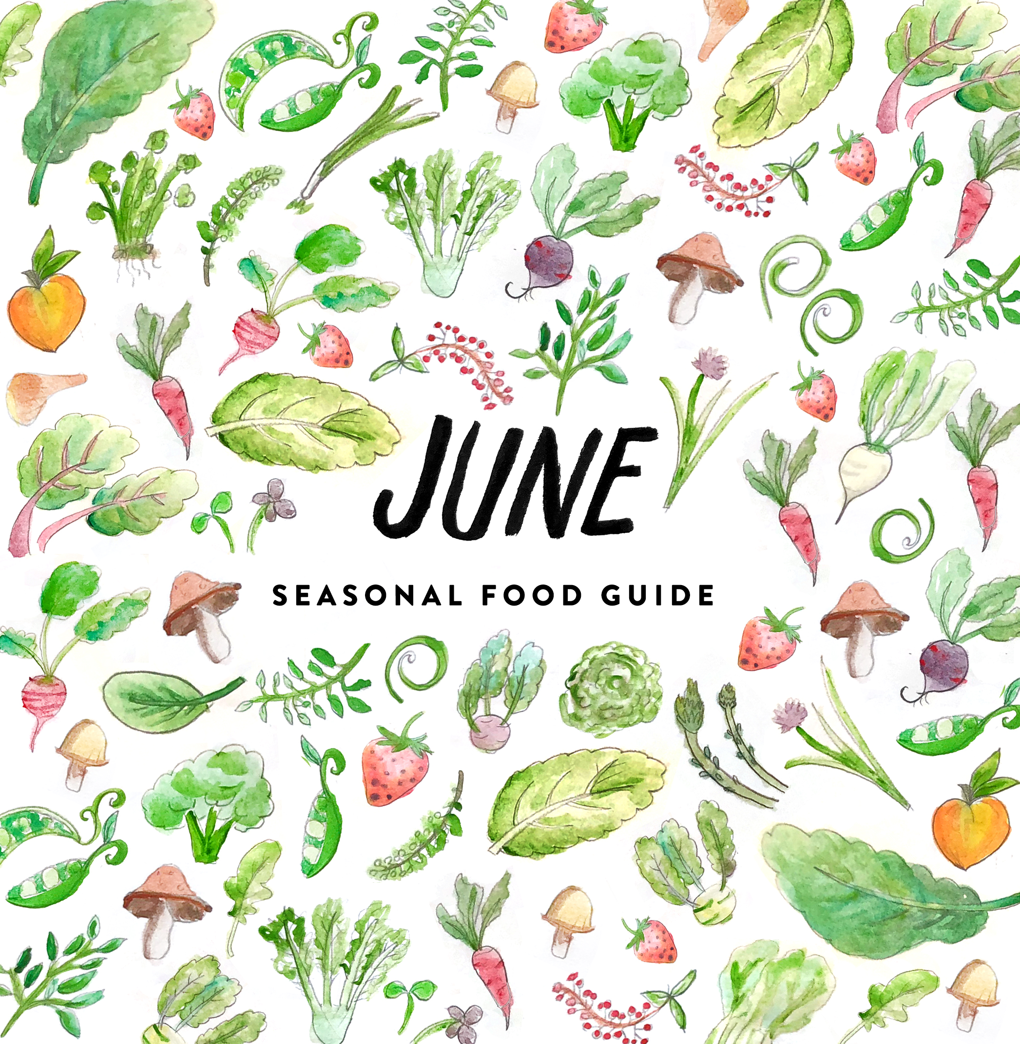 Seasonal Food List for the Midwest for the month of June. June's list of in season foods on The Fresh Exchange.