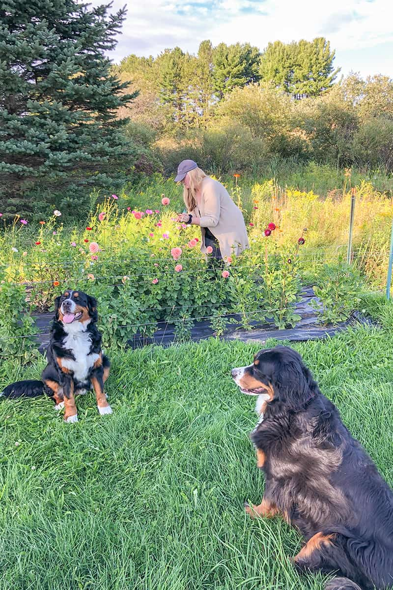 Garden Tour: Kalin Sheick of Sweetwater Floral in Petoskey, Michigan