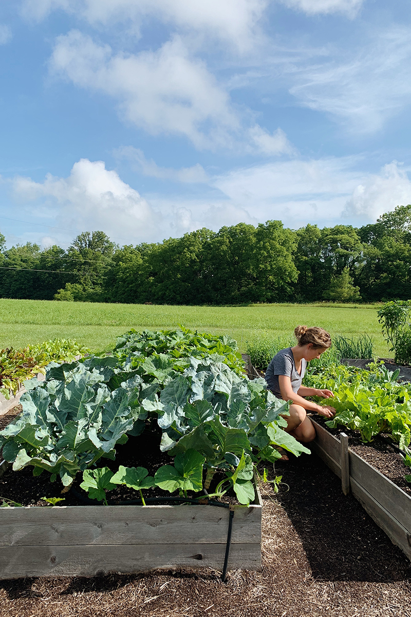 Garden Tour in Indiana - Kelsey Johnston of My Simply Simple