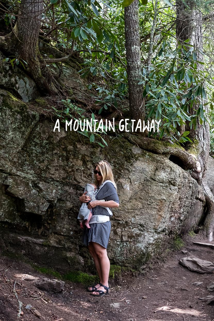 A Mountain Getaway to Asheville, NC | The Fresh Exchange