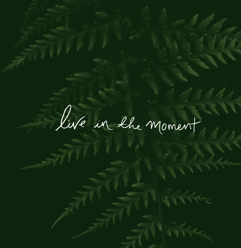 Live In the Moment This weekend | The Fresh Exchange