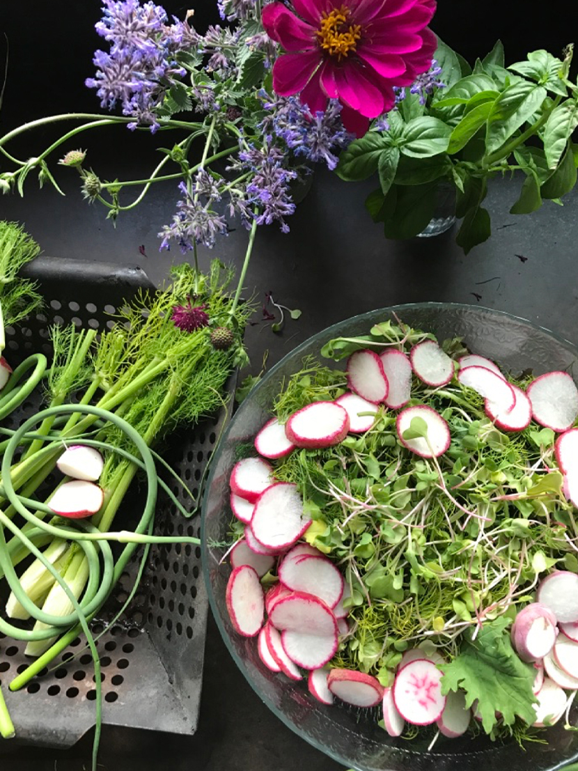 What to do with Microgreens and what to know about them all on The Fresh Exchange.