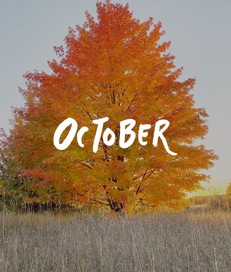 October graphics