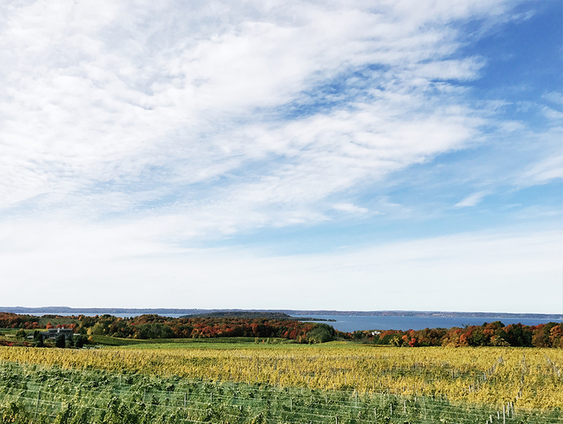Old MIssion Peninsula day Guide from Traverse City, Michigan. Get the full guide on The Fresh Exchange.