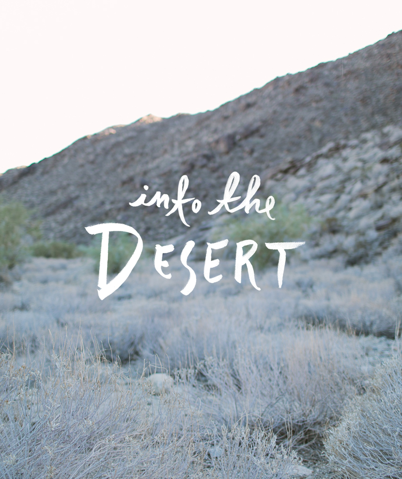 Into the Desert | The Fresh Exchange
