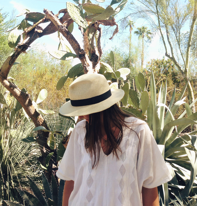 A Guide to Palm Springs, California     The Fresh Exchange