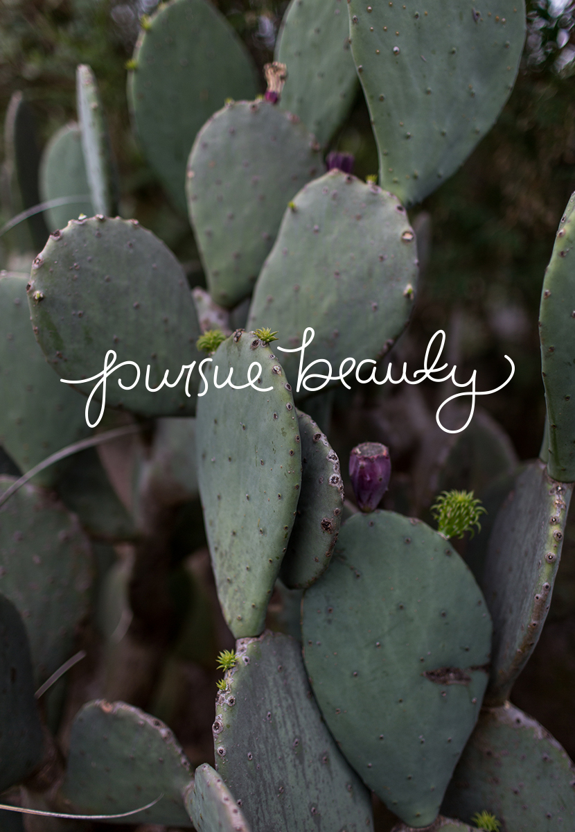 Monday Words: Pursue Beauty | The Fresh Exchange