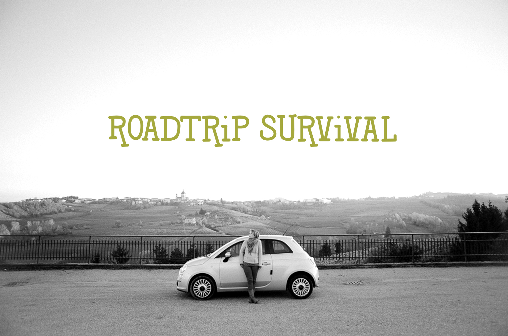 Roadtrip Survival  |  The Fresh Exchange
