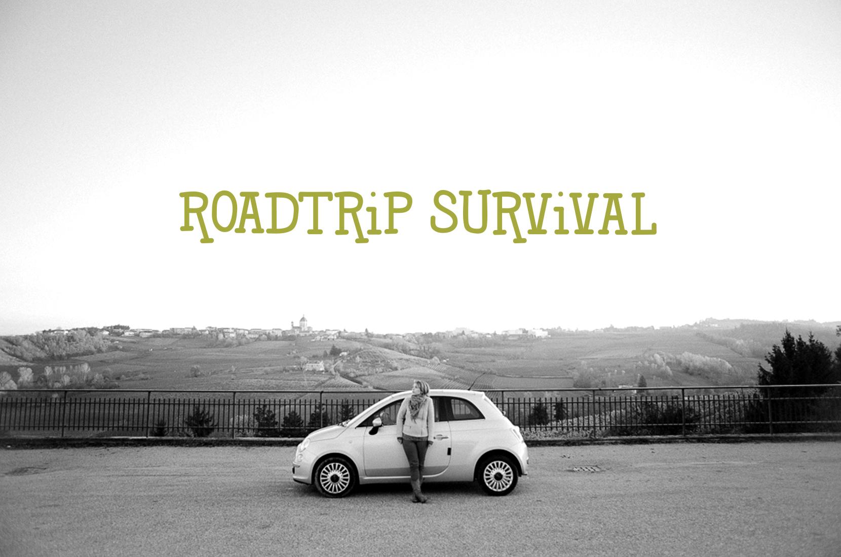 Roadtrip Survival  |  The Fresh Exchange