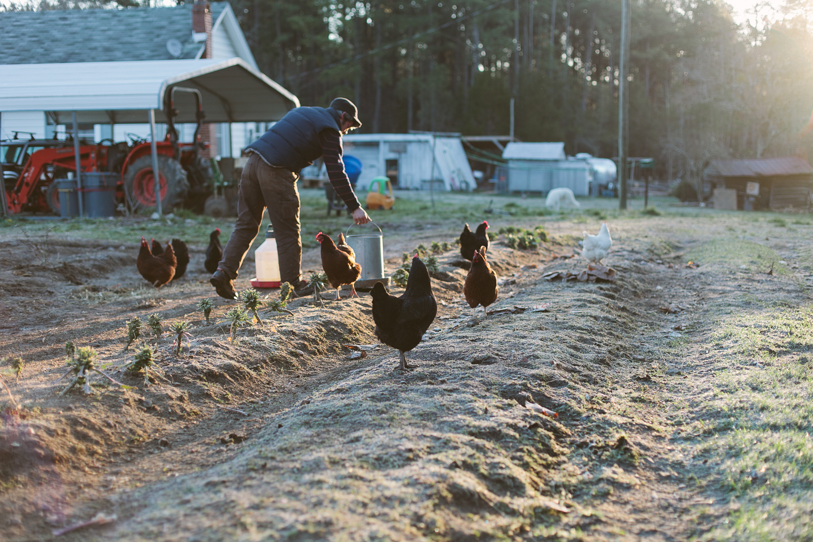 Simple Evening: Raleigh - Farm to Table | The Fresh Exchange