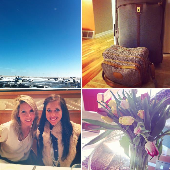 Amy Anderson, Parker Etc, Flowers, Salt Lake City, Alt Summit, Utah