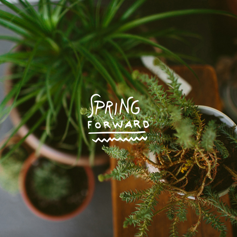New Work: Spring pack with Over | The Fresh Exchange