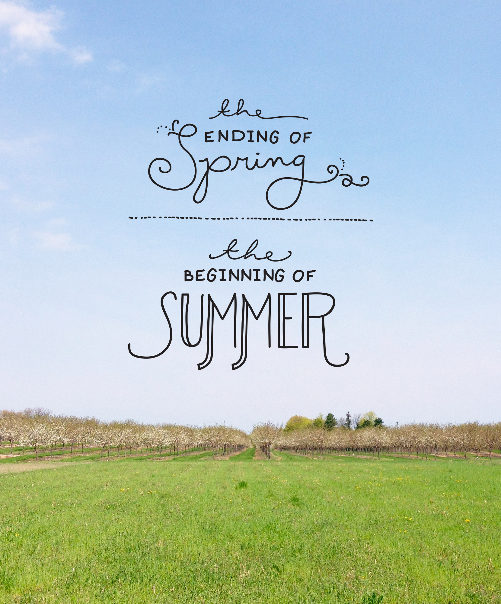 End of Spring and beginning of Summer  |  The Fresh Exchange