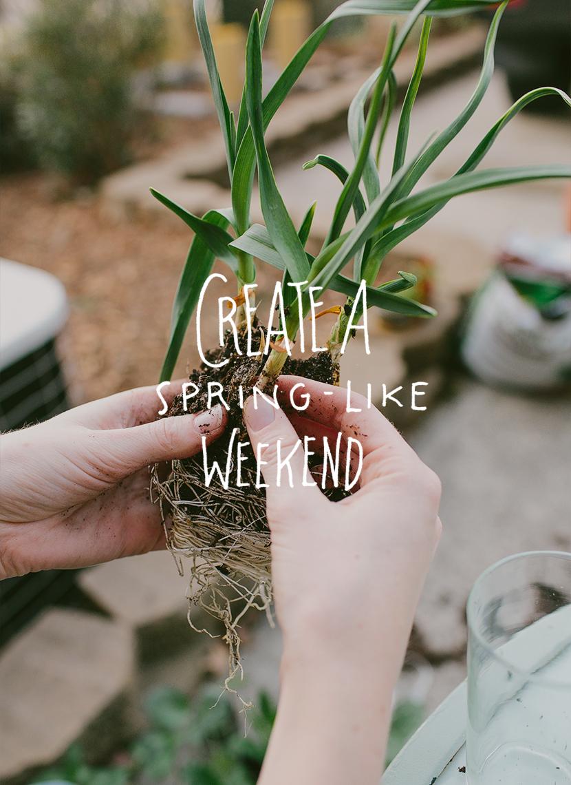 Create a Spring-Like Weekend   The Fresh Exchange