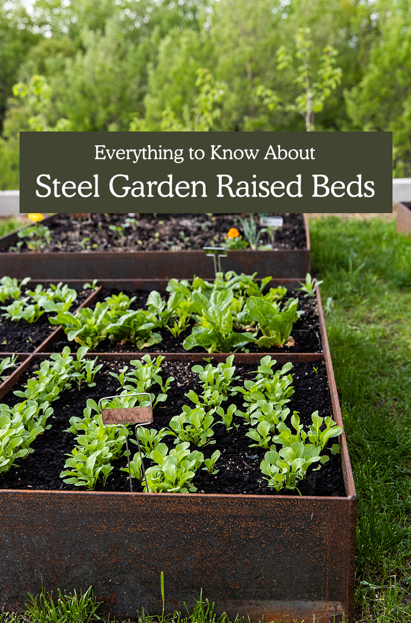 Steel Raised Beds - Everything You need to know.