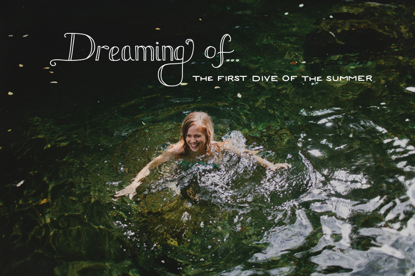 Dreaming of: The First Dive of the Summer  |  The Fresh Exchange
