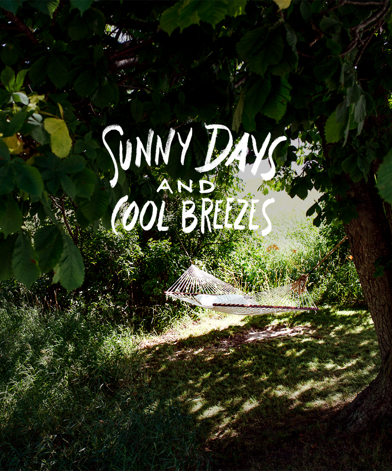 Playlist: Sunny Days and Cool Breezes | The Fresh Exchange