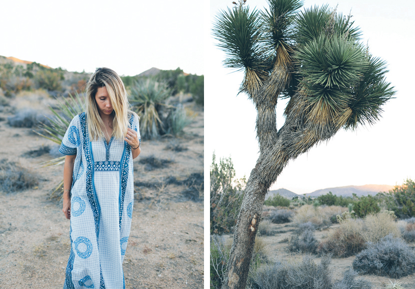 Joshua Tree - A Style Story  |  The Fresh Exchange