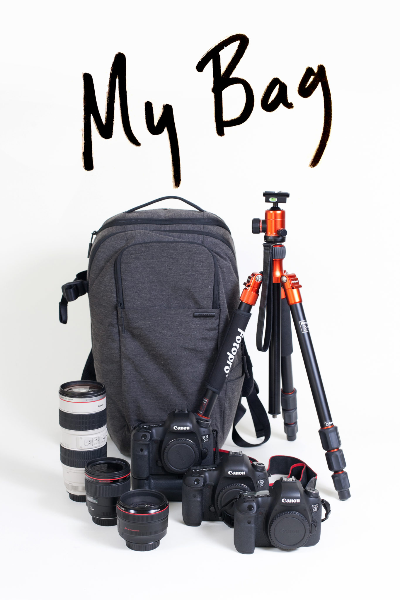 Camera Essentials for Bloggers | The Fresh Exchange
