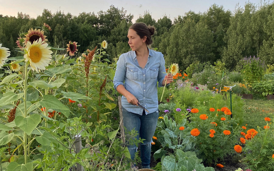 Tips to Consider When Starting Your Garden