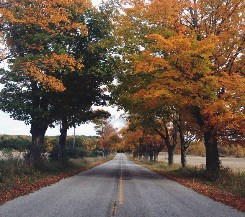 Traverse City in the Fall  |  The Fresh Exchange