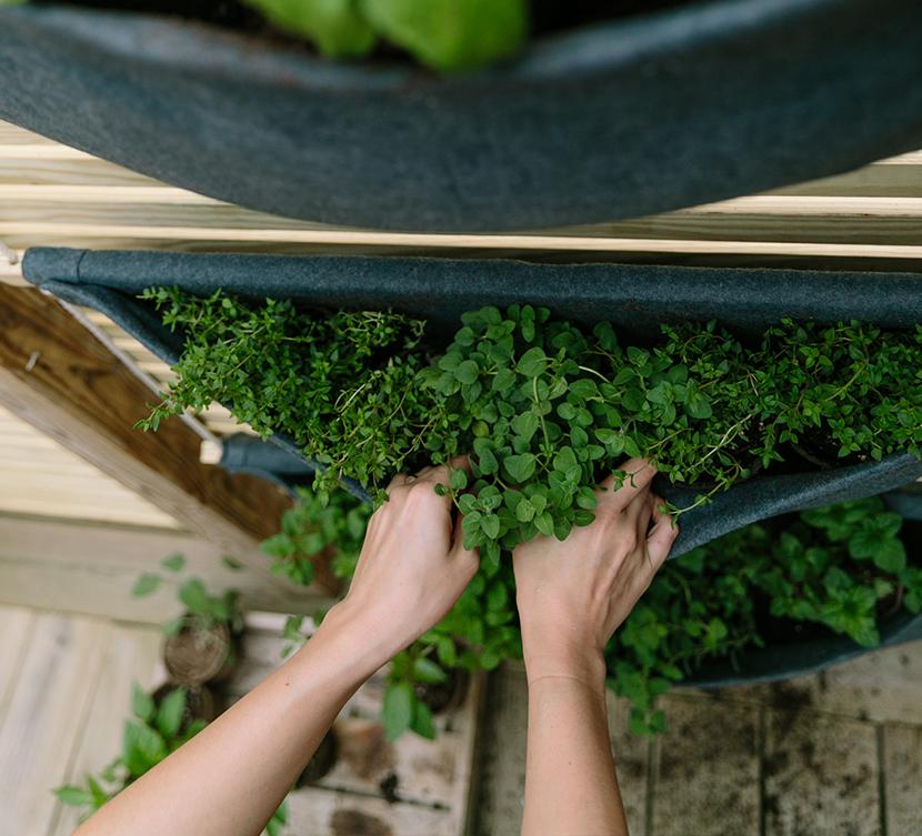 DIY: A Simple Vertical Herb Garden | The Fresh Exchange